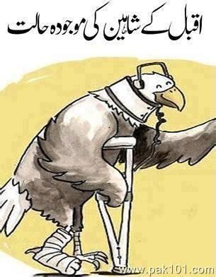 My Country Pakistan English Essays